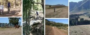 Oak Valley Bike Trail