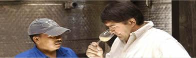 Stellar Winery 1