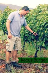 Kobus in his vineyards