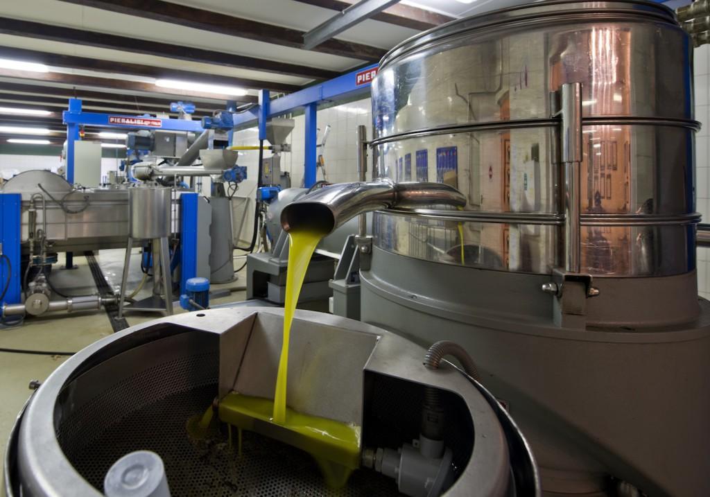 Olive Oil Press copy