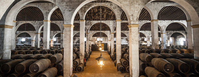 One of Lustau's Sherry Bodegas