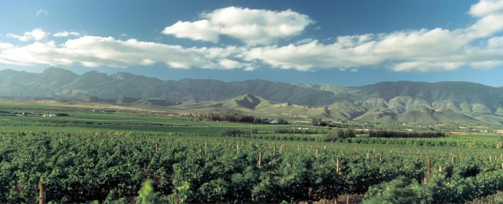 Rietvallei in the Robertson Valley