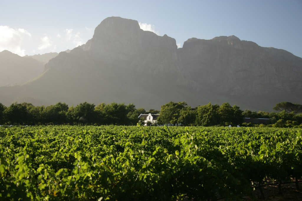 The Boschendal Manor House dwarfed by the Groot Drakenstein Mountain