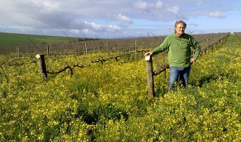 Billy in his Vineyards at Kasteelsig
