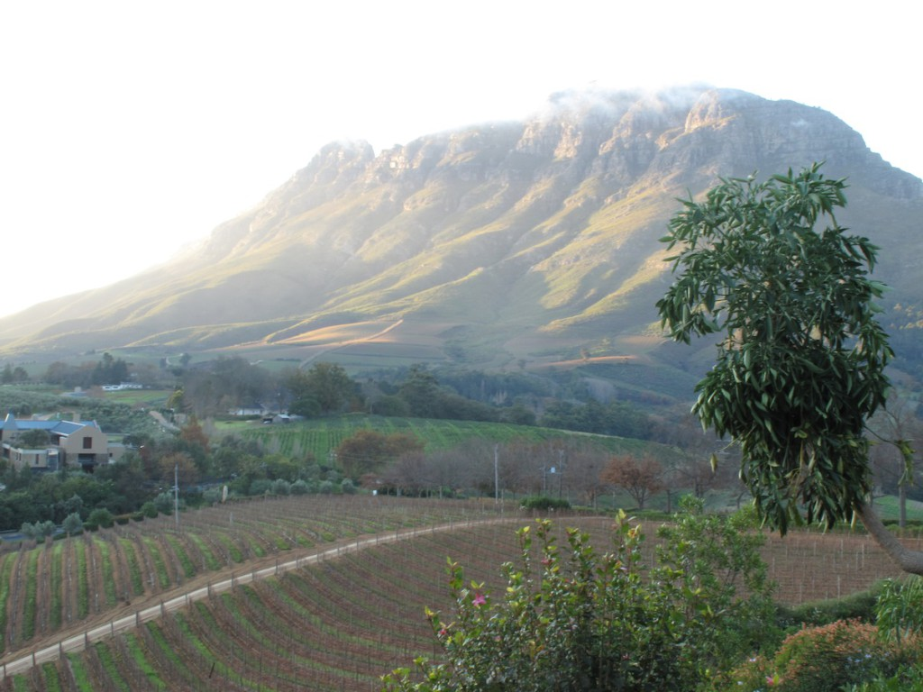 The Simonsberg from Indochine