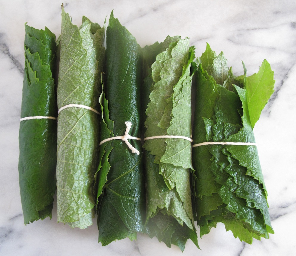 Vine leaves before boiling