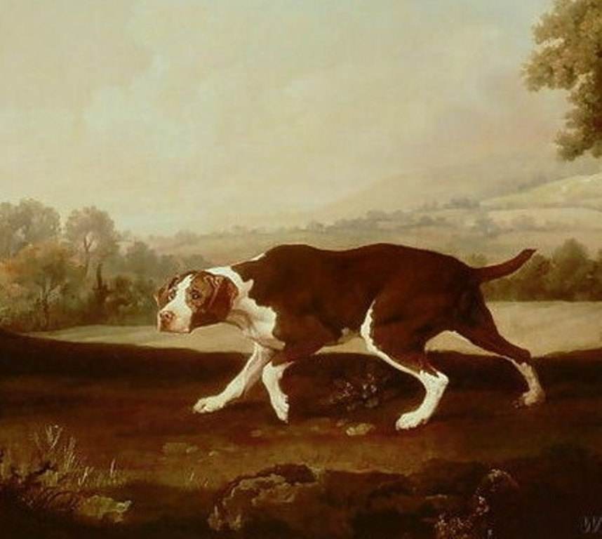 spanish-pointer-by-stubbs